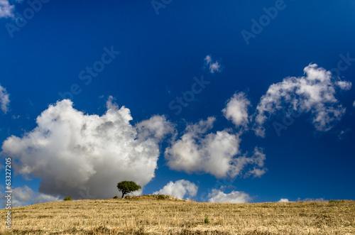Sardegna, scenario di campagna