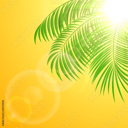 Palm tree on sun background