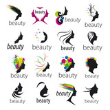 Fototapety collection of vector logos beautiful female face