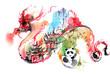 China - 63336667