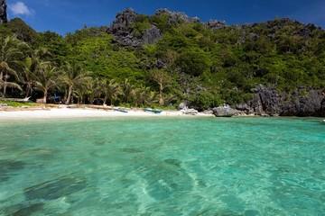 Tranquil tropical beach