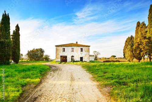 Old abandoned rural house, road and trees on sunset.Tuscany, Ita