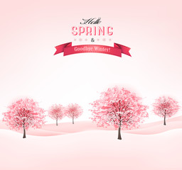 Spring background with blossoming sakura trees. Vector.