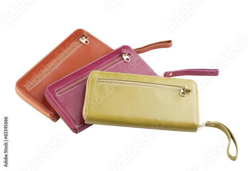 Beautiful lady wallets nice accessories isolated