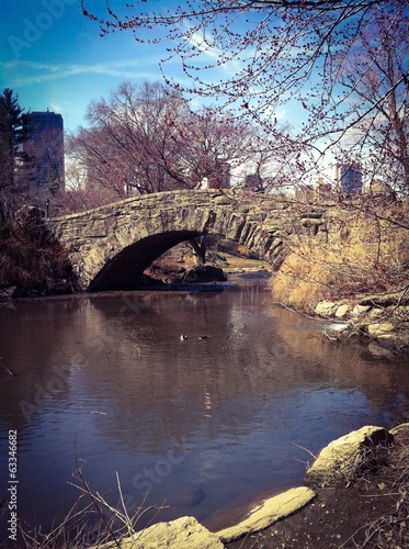 Puente en Central Park, Manhattan, New York