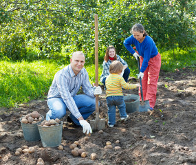 family harvesting potatoes