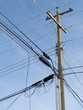 Wooden pole confusing power cable phone line mess