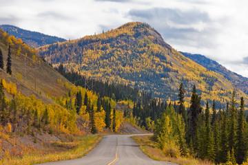 North Klondike Highway golden taiga Yukon Canada