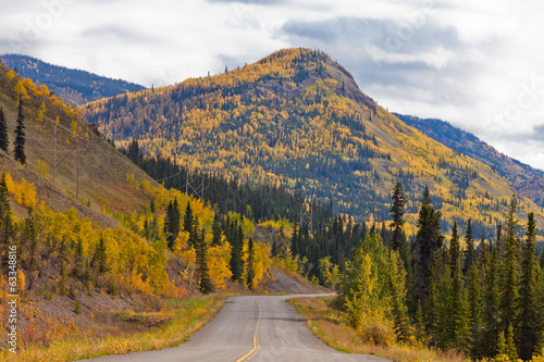 North Klondike Highway golden taiga Yukon Canada