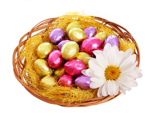 Easter. Colorful Chocolate Eggs in Basket with Chamomile Flower