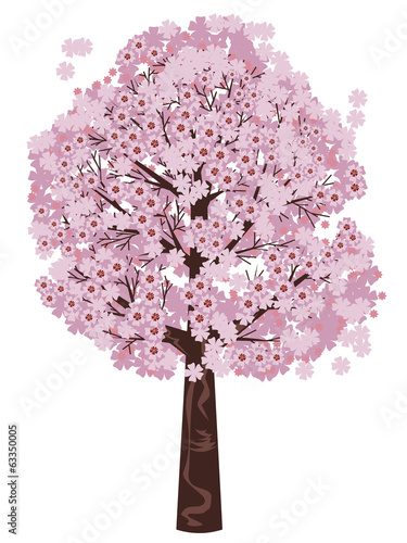 Blooming Sakura Tree