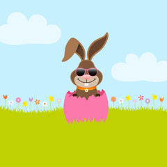 Bunny Sunglasses Pink Eggshell Meadow