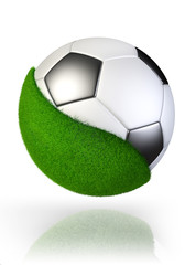 grass on soccer ball