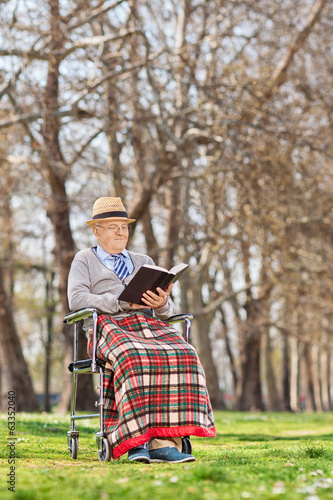 An old man reading a novel outdoors