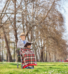 Senior in a wheelchair reading a book in park
