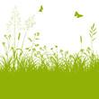 Blumenwiese, Gras, Silhouette, Rasen, Grass, Hayfield, EPS