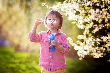 Portrait of  lovely little boy blowing soap bubbles