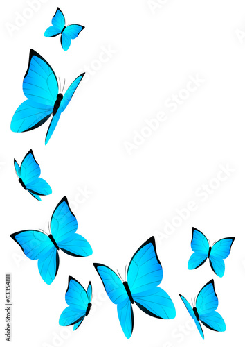 Blue butterflies for Your design