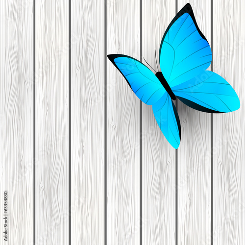 Blue butterfly on wooden background