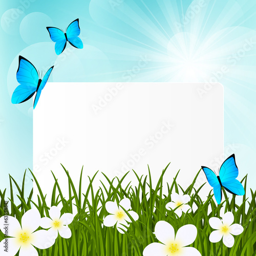 Greeting card on green grass