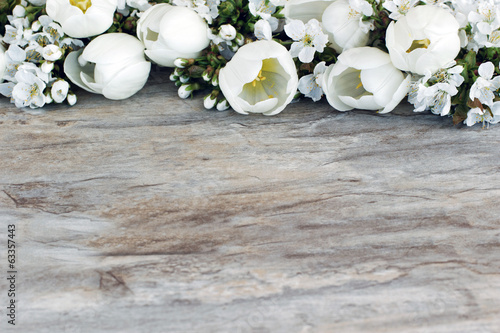 Foto op Plexiglas Kersen Tulpen mit Kirschblüten