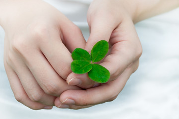 Compassion with a Four Leaf Clover