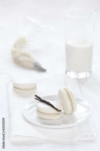 Vanilla Macarons on a white background