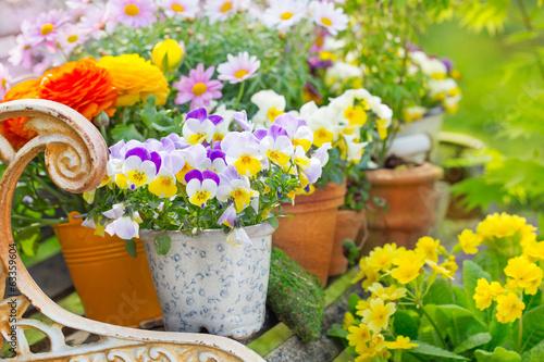 Foto op Plexiglas Tuin Deko mit Blumentöpfen - Garten im Frühling