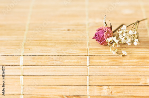 vintage    picture,   nice soft background,small flowers