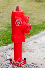 Red fire hydrant stands on the roadside with green grass