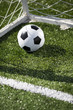 Soccer ball and goal net