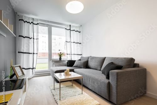 Gray sofa in modern living room
