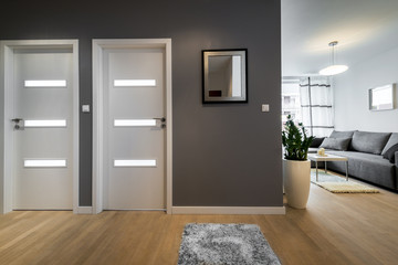 Corridor and living room  in modern apartment