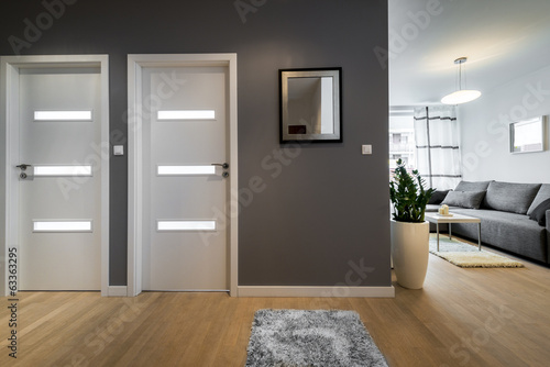 Corridor and living room  in modern apartment - 63363295