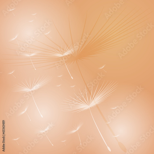 blowball background
