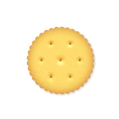 Crunchy Cracker on white background.