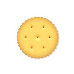 Crunchy Cracker on white background.
