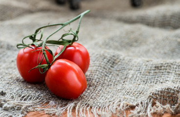 Cherry tomatoes over rustic background
