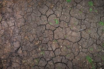Closeup of dry soil texture