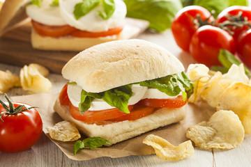 Organic Homemade Caprese Sandwich