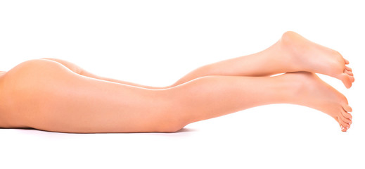 female legs on the white background