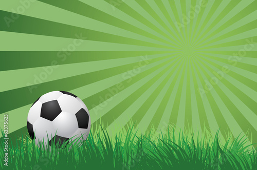 soccer ball on green grass  vector illustration