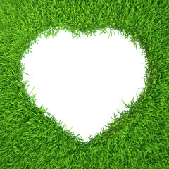 Grass heart isolated on white background