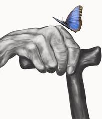 farfalla posata su mano di vecchio