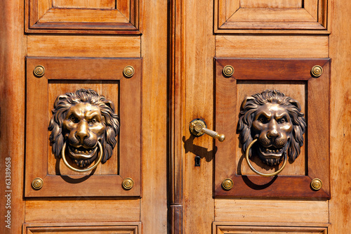 Luxury door knockers - lion heads