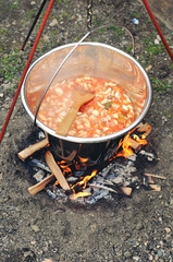 Cooking stew in nature