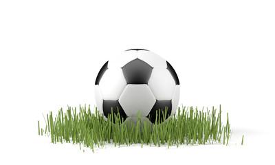 Palla da calcio su erba