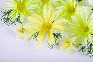 Flowers on a light background