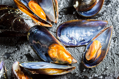 Closeup of freshly caught raw mussels