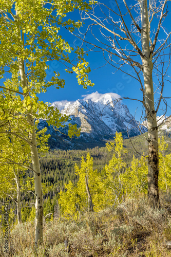 Sawtooth mountains of Idaho autumn